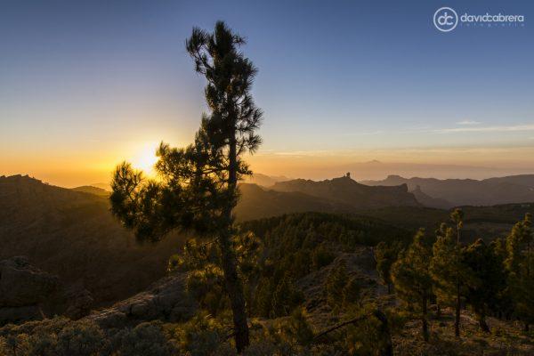 Foto Paisaje de Gran Canaria desde el Pico de Las Nieves